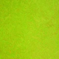 Tilo Linoleové podlahy Color, Lime, HDF