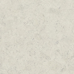 Tilo Korkové podlahy Natural, Astra polárně bílá, lak